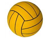 Palloni pallanuoto